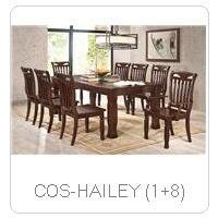 COS-HAILEY (1+8)